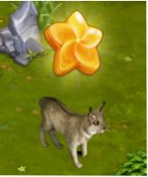 Light Lynx