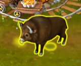 Golden Frontier Adult Bison