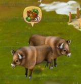 Golden Frontier Bison Stage 3