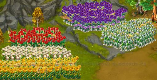 Golden Frontier Spring Flowers