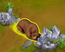 Golden Frontier Bear