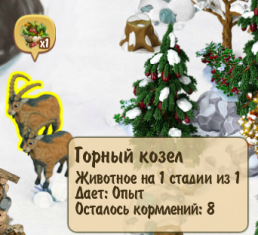 mountain-goat-1