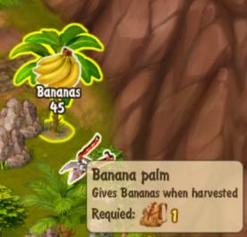 banana-palm
