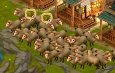 sheep-uses-2-hay-each