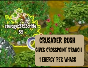 crosspoint-branch-from-crusader-bush