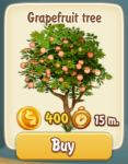 grapefruit-tree